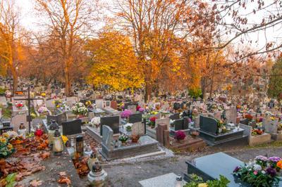 Скепа польской идентичности Poland Polska Miasto City Cracow Kraków Польша Краков кладбище cemetery cementarz