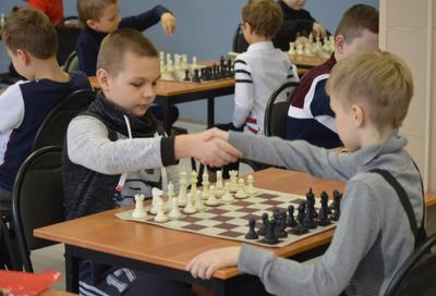Игра царей. II Жуковский шахматы