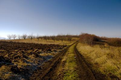Старая дорога пейзаж зим время деревня природа