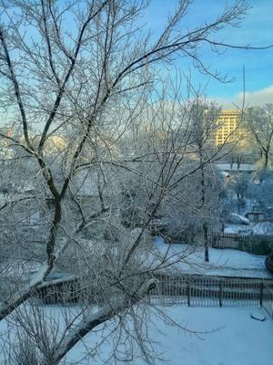 Зима рисует самыми лучшими красками