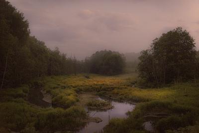 """""""Ночь на болоте. туман""""."""