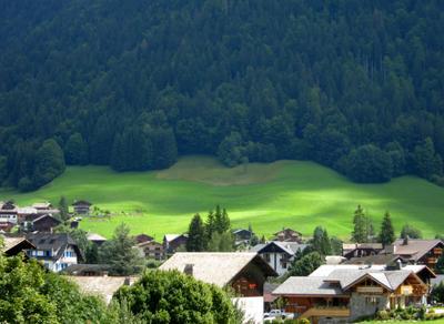 Green Alpine meadow Alpine meadow mountain landscape