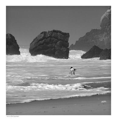 Амазонка Португалия девушка океан скалы волны прибой