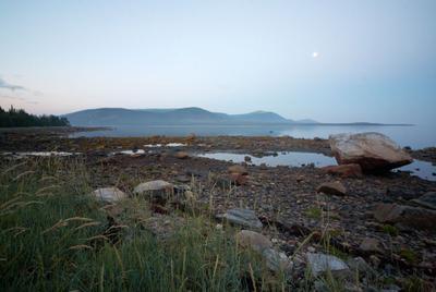 траffка/литораль 3 Белое море, Колвицкая губа