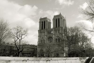 просто Париж париж готика собор сепия