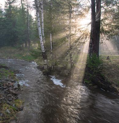 Туман и солнце