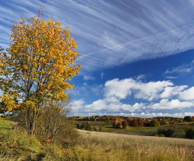 Облака-облака