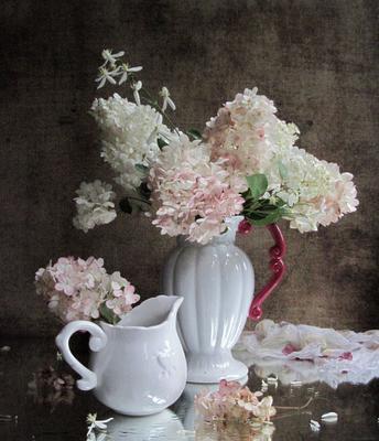 Гортензия цветы букет гортензия клематис наталия тихомирова celesta