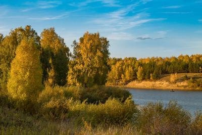 Золотая осень в Зауралье. озеро осень природа россия