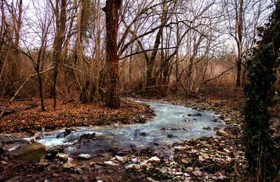 Пшада Река осень