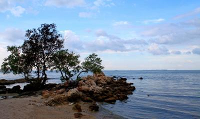 Сиамский залив таиланд море залив побережье паттайя