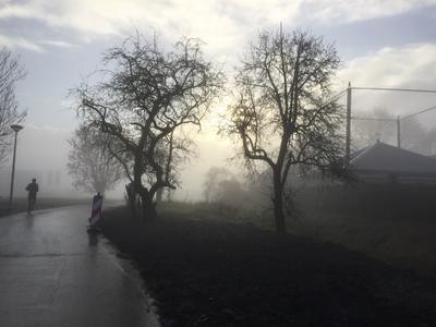 Januari 2021 Mist