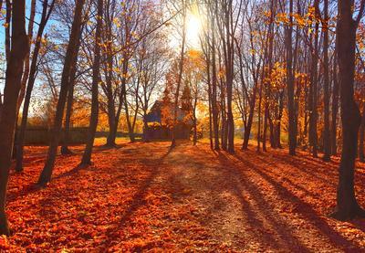 Болдинская осень Болдино