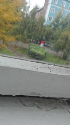 Дождливый день. Дождь