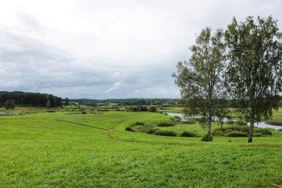 Раздолье природа простор красота луг березы река небо пейзаж