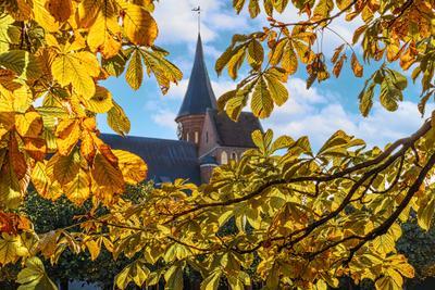 Собор осень листья здания
