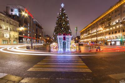 Новогодний Цветной бульвар цветной бульвар ёлка город ночная съёмка выдержка