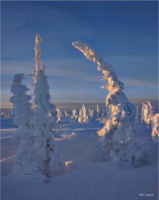 Поклон восходящему солнцу горная шория шерегеш горы зима снег солнце рассвет
