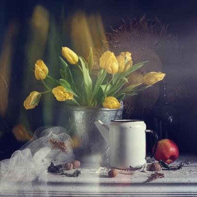 Сумерки тюльпанов цветы тюльпаны натюр морт