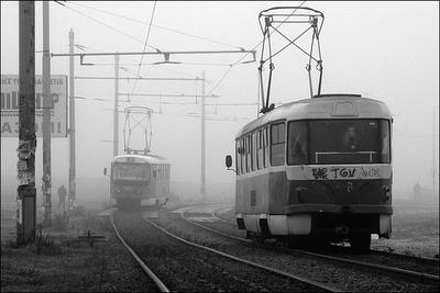 «Бесконечность» утро туман настроение
