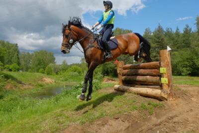 ..кросс.. лето природа соревнования конный спорт