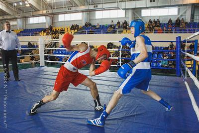Boxing boys boxing ring sport boys