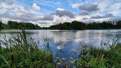 На берегу Финского озера СПб Парголово Финское озеро