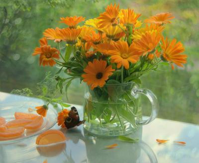 С ноготками ноготки бабочка стекло