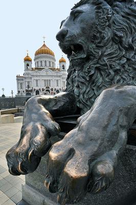 D'nt worry... моя Москва