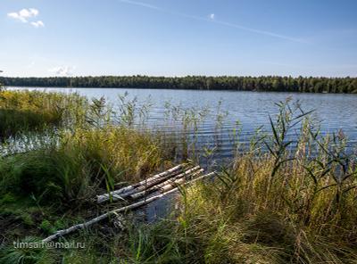 озеро Женское озеро Женское Марий Эл