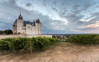 Сомюрская тропа виноград Луара замок