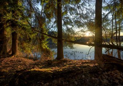 / Подмосковные дебри / пейзаж весна подмосковье чехов красиво природа восход утро
