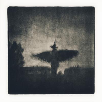 О чём поёт ночная птица Holga Lith print