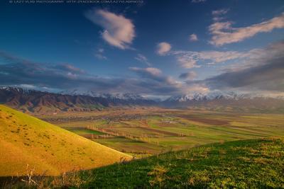 Весенний вечер киргизия бишкек ала-тоо горы апрель весна горные цветы lazy_vlad lazyvladphoto nophotoshop
