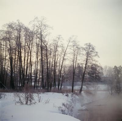 Рассвет туманным утром