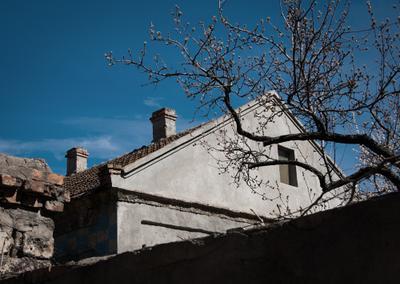 *** дом дерево весна крыша ветка