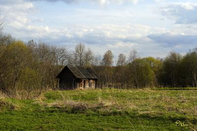Старая баня баня природа деревня пейзаж весна
