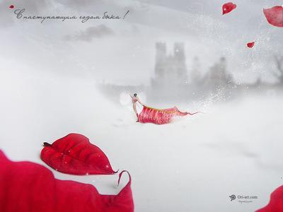 Viva el Toro коррида бык тореодор новый год