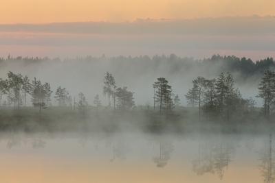 Сарожские туманы туман