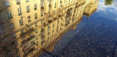 Июльское зеркало Кутузовского проспекта