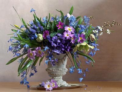 Цветов весенних акварель Натюрморт первоцветы весна букет цветов