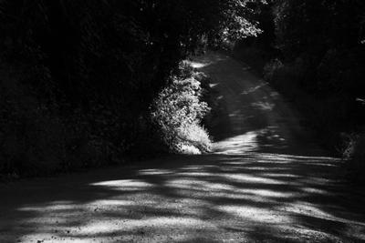 Дорога Дорога свет и тень ч б