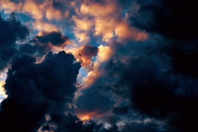 The One фото, пейзаж, небо, облака, закат, птица