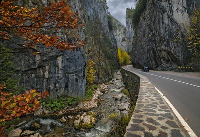 Параллели горы Карпаты дорога ручей осень