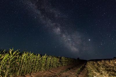 Безмятежность Млечный путь астропейзаж звезды ночь ночное небо поле звездное