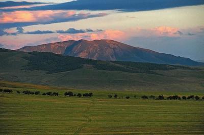 Road to mount Lejan горы вечер поле дерево облака