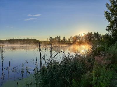 У озера на рассвете. небо пейзаж природа лето восход