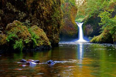 Punch Bowl Falls ( Eagle Creek) Punch Bowl Falls Eagle Creek