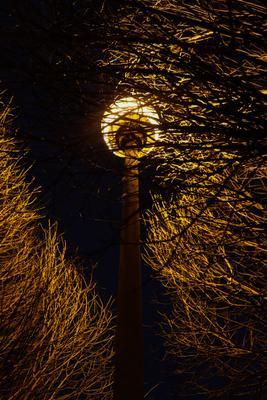 Ночная лампа лампа улица ночь свет