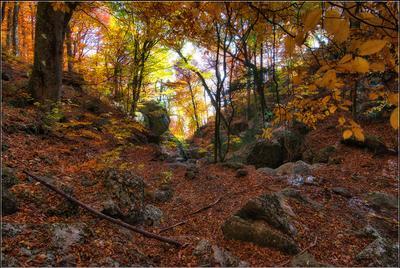*** Крым Осень Демирджи